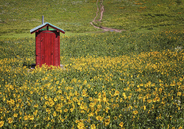 Outhouse Poster featuring the photograph Red Outhouse 6 by Maria Struss
