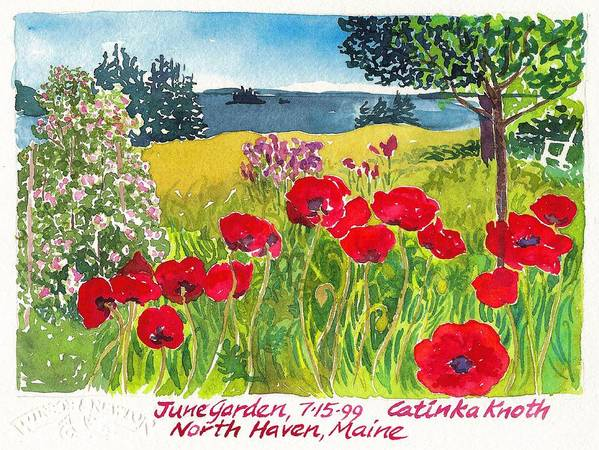 Summer Poster featuring the painting Red Poppies Coastal Maine Island June Garden North Haven by Catinka Knoth