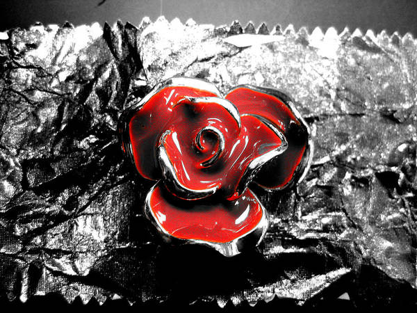 Flower Poster featuring the photograph Red Rose by Anna Thomas