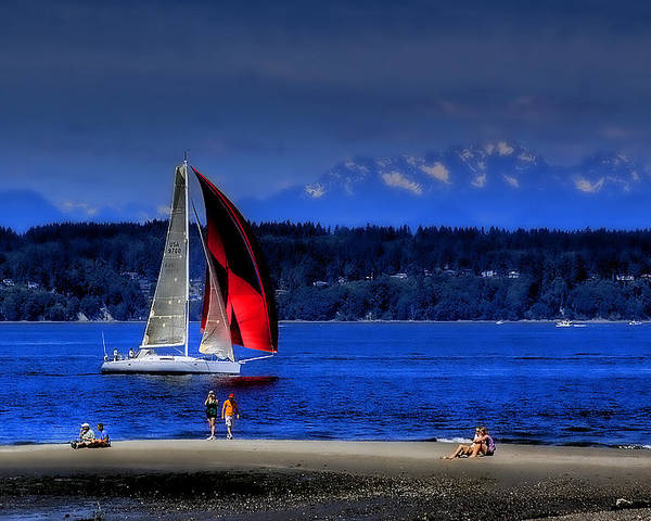 Discovery Park Poster featuring the photograph Red Sail by David Patterson