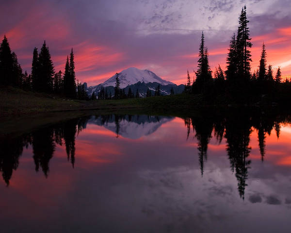Rainier Poster featuring the photograph Red Sky At Night by Mike Dawson