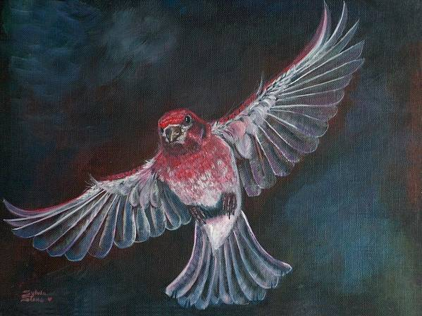 Acrylic Poster featuring the painting Redbird by Sylvia Stone