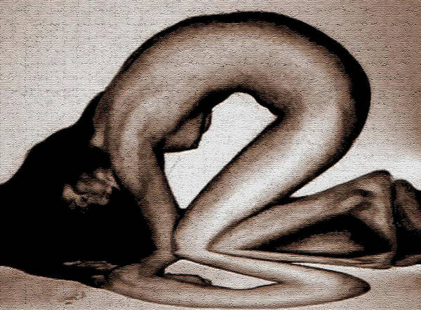 Nude Poster featuring the drawing Reflection by Angela Conway