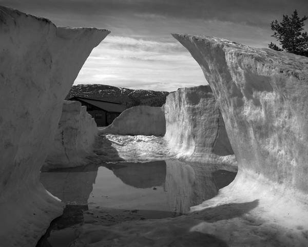 Black And White Poster featuring the photograph Reflections Of Ice by Terence Davis