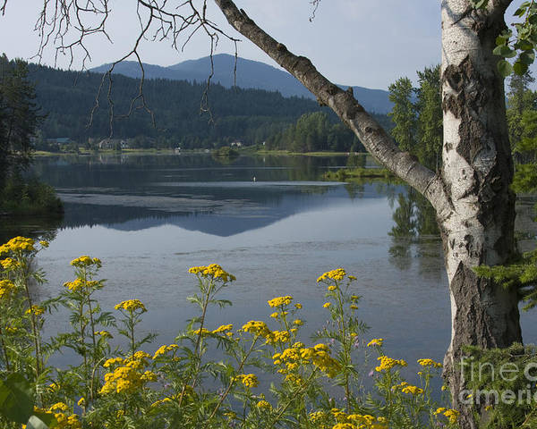 Landscape Poster featuring the photograph Reflections Of Summer by Idaho Scenic Images Linda Lantzy