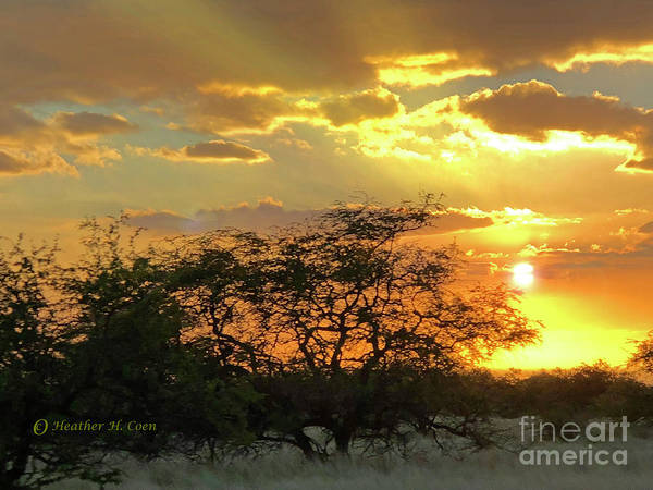 Hawaii Poster featuring the photograph Reflections Sunset Hawaii by Heather Coen