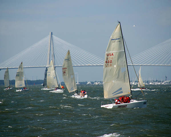 Photography Poster featuring the photograph Regatta In Charleston Harbor by Susanne Van Hulst
