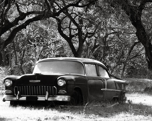 Americana Poster featuring the photograph Resting Amongst The Oaks by Marilyn Hunt