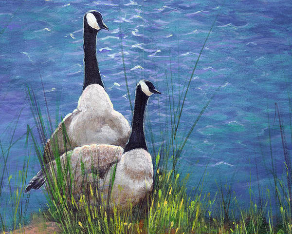 Landscape Poster featuring the painting Resting Geese by SueEllen Cowan