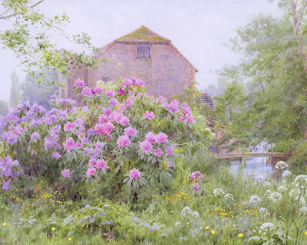 Rhododendrons By A Watermill Poster featuring the painting Rhododendrons By A Watermill by George Marks