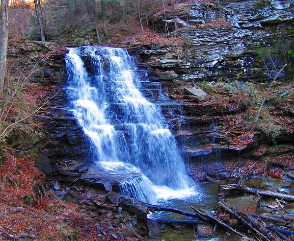 Ricketts Glen Poster featuring the photograph Ricketts Glen Waterfall 3941 by David Dehner