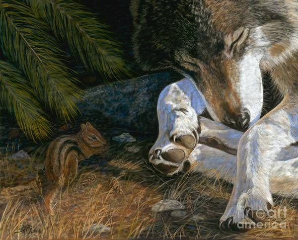 Wolf Poster featuring the painting Risky Business by Sheri Gordon