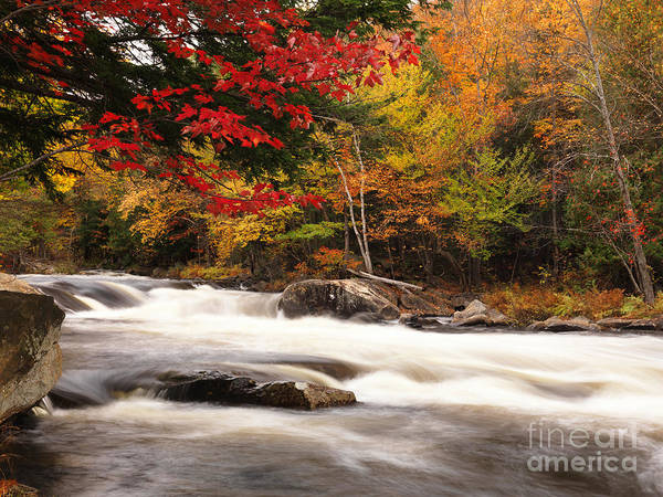 River Poster featuring the photograph River Rapids Fall Nature Scenery by Oleksiy Maksymenko