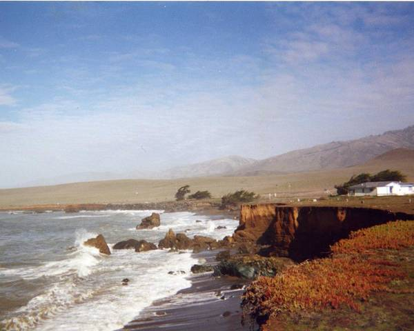 Coast Poster featuring the photograph Road To Monterey by Jennifer Ott
