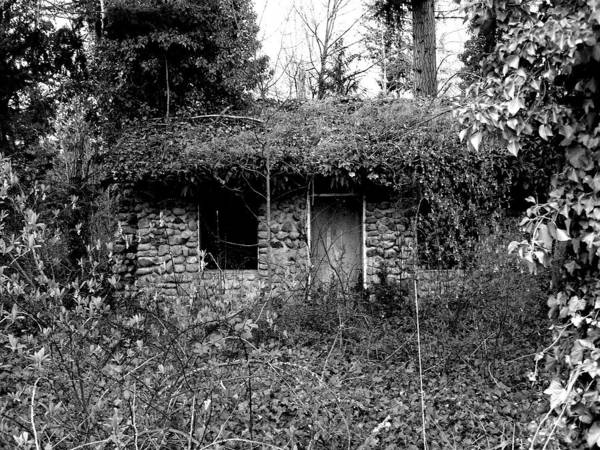 Digital Photography Poster featuring the photograph Rock Cabin Black And White by Laurie Kidd
