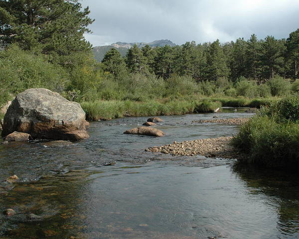 Nature Poster featuring the photograph Rocky Mountain Stream by Kathy Schumann