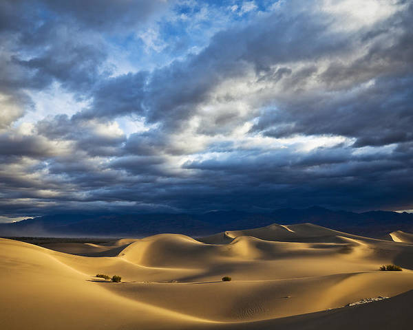 California Poster featuring the photograph Rolling Sand Dunes by Greg Clure