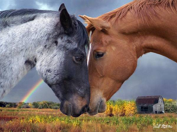 Horses Poster featuring the mixed media Romance by Bill Stephens