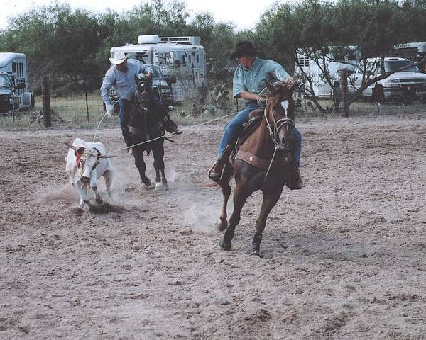 Horses Poster featuring the photograph Roping Event 4 by Wendell Baggett