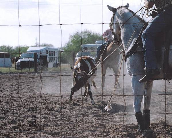 Horse Poster featuring the photograph Roping Event 5 by Wendell Baggett