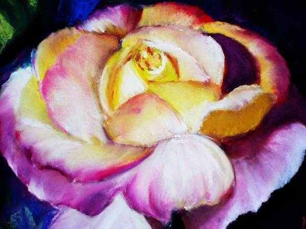 Rose Poster featuring the print Rose by Melinda Etzold