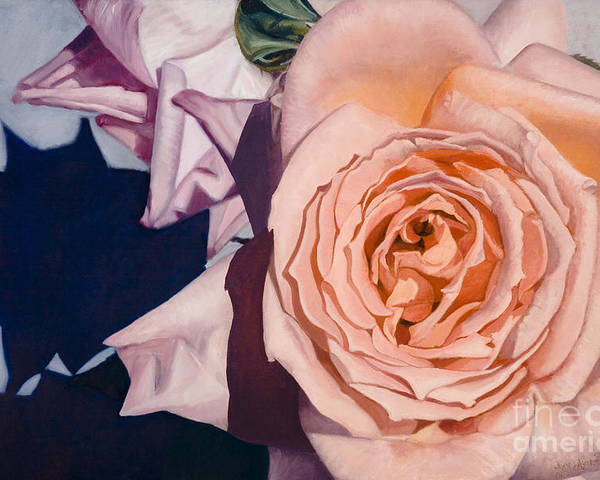 Roses Poster featuring the painting Rose Splendour by Kerryn Madsen-Pietsch