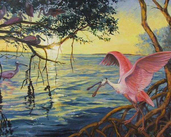 Acrylic Painting Poster featuring the painting Roseate Spoonbills Among The Mangroves by Dianna Willman