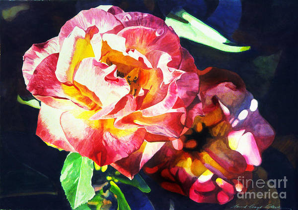 Roses Poster featuring the painting Roses by David Lloyd Glover