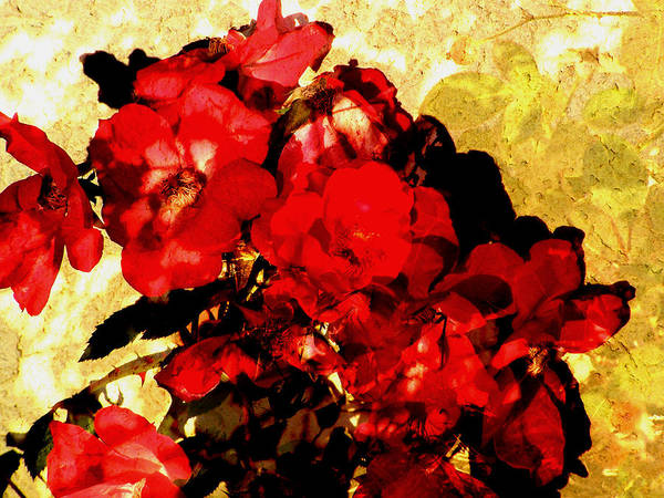Flowers Poster featuring the digital art Roses by Sally Engdahl