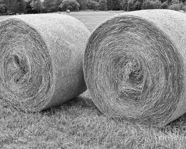 Hay Poster featuring the photograph Round Hay Bales Black And White by James BO Insogna