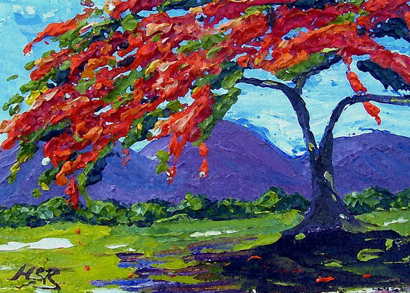 Royal Poinciana Poster featuring the painting Royal Poinciana Palette Oil Painting by Maria Soto Robbins