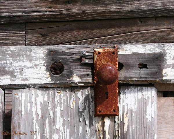 Door Poster featuring the photograph Rusty Entry by Lisa Johnston