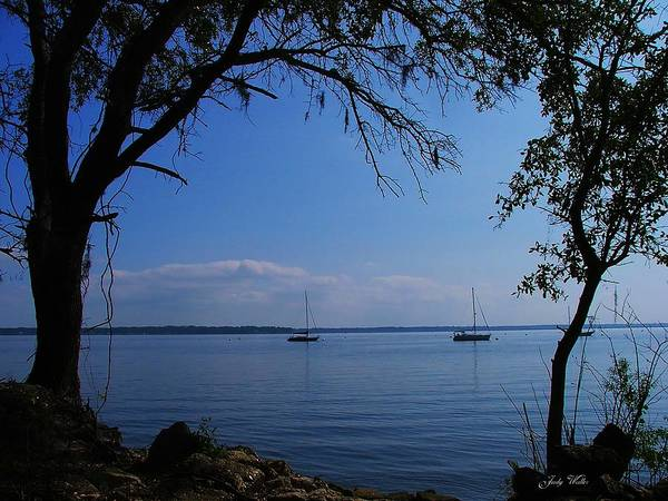 Trees Poster featuring the photograph Sail Boats On The Bay by Judy Waller