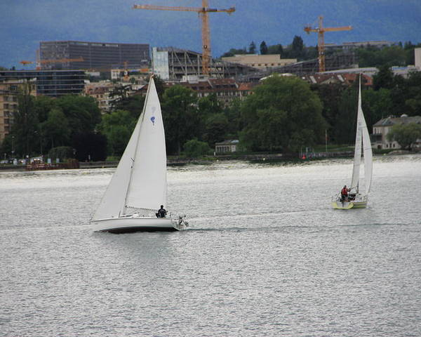 Geneva Poster featuring the photograph Sailboats by Nurlan Alymbaev