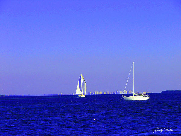 Sailboats Poster featuring the photograph Sailing by Judy Waller