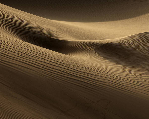 Dunes Poster featuring the photograph Sand Dune by Phil Crean