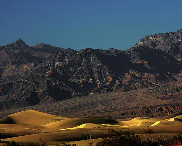 Eath Valley National Park Poster featuring the photograph Sand Dunes - Death Valley's Gold by Christine Till