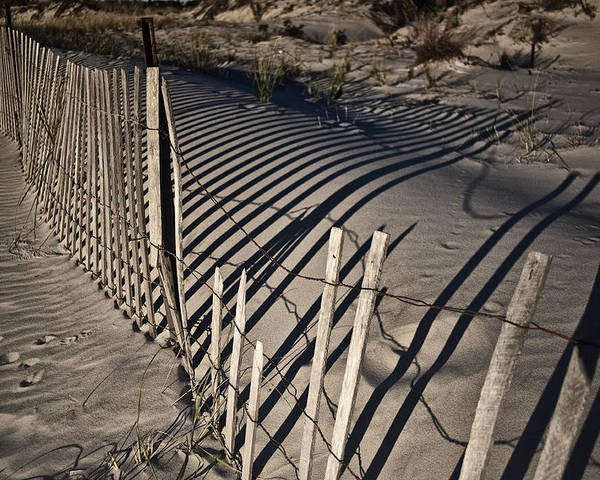 Sand Poster featuring the photograph Sand Fence by Joel P Black