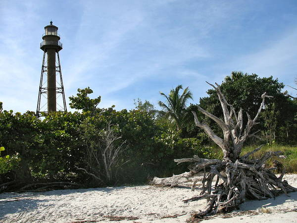 Sanibel Lighthouse Poster featuring the photograph Sanibel Light And Driftwood by Christiane Schulze Art And Photography