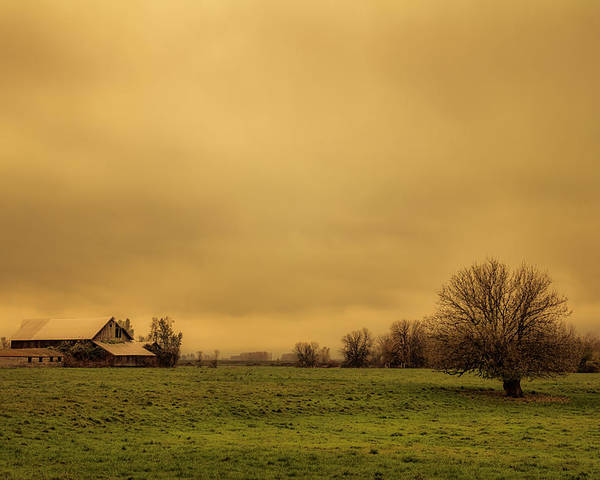 Barn Poster featuring the photograph Sauvie Island Barn by Don Schwartz