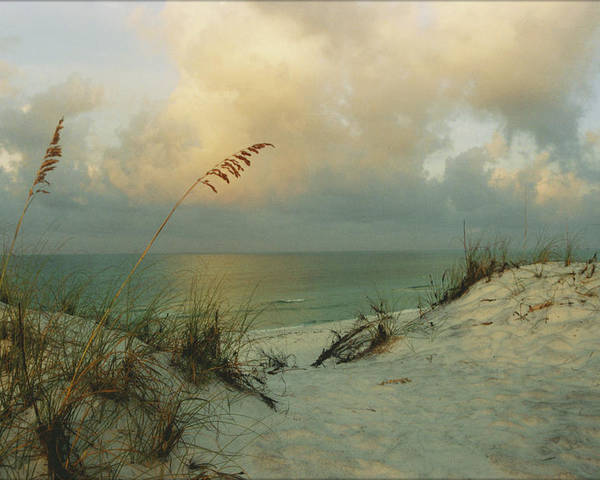 Ocean Poster featuring the photograph Sea Scape by Deborah Gallaway