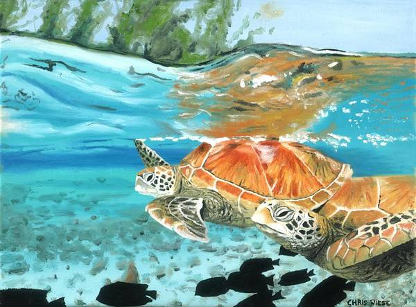 Sea Turtles Poster featuring the painting Sea Turtles by Chris Wiese