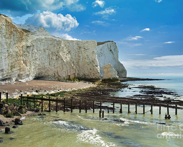 East Sussex Poster featuring the photograph Seaford Cliffs by Donald Davis
