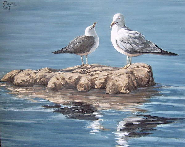 Seagulls Sea Seascape Water Bird Poster featuring the painting Seagulls In The Sea by Natalia Tejera