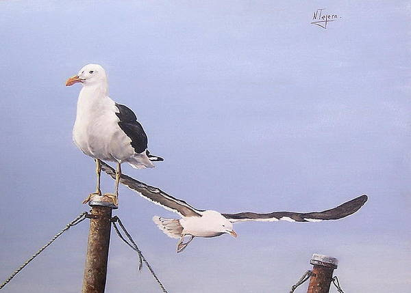 Seascape Gulls Bird Sea Poster featuring the painting Seagulls by Natalia Tejera