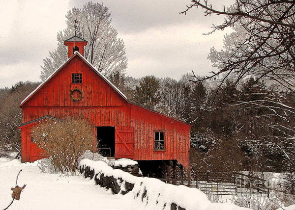 Red Barn Poster featuring the photograph Season's Greetings by Betsy Zimmerli