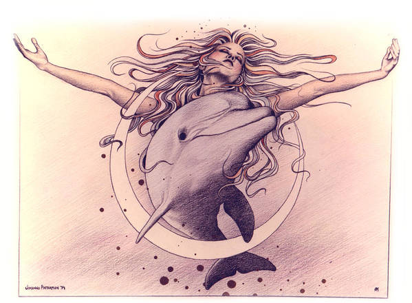 Dolphin Poster featuring the drawing Selene by Johanna Pieterman