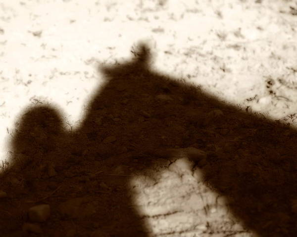 Shadow Poster featuring the photograph Shadow Of Horse And Girl by Angela Rath