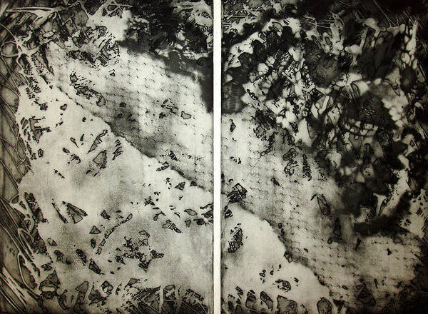 Etching Poster featuring the drawing Shadows And Lace by Nancy Mueller