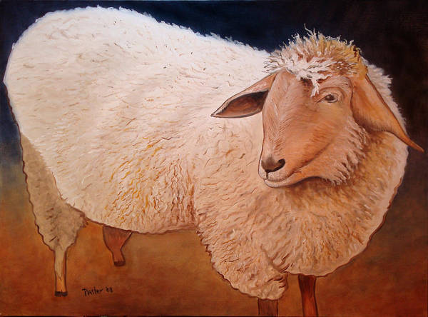 Animal Poster featuring the painting Shaggy Sheep by Scott Plaster